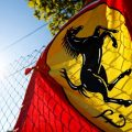 'Sign Ferrari & Bulls, rest can take it or leave'