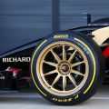 All team to build mule cars for 18-inch tyre tests
