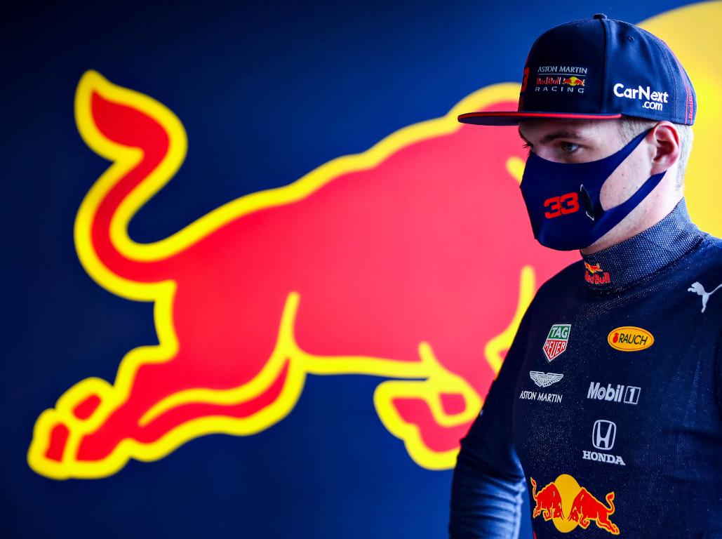 Max Verstappen bull mask