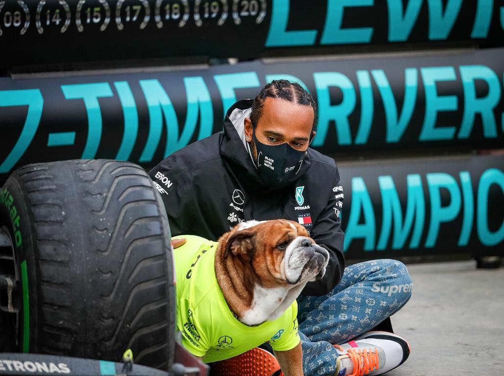 Lewis Hamilton Roscoe World Champion