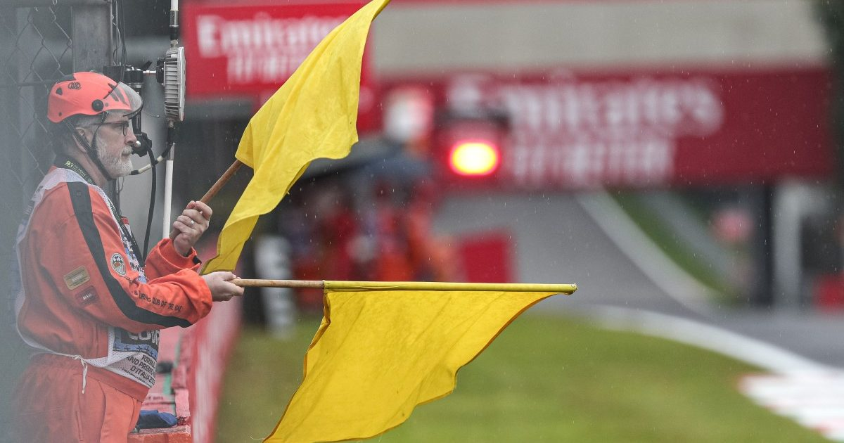 Double yellow flag is waved to warn of a hazard. Italy, September 2019.